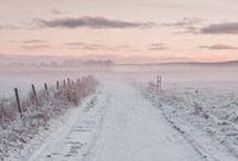 SEASONAL . Winter