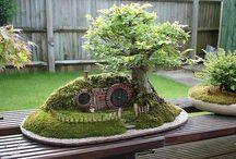 Fairy garden / Fairy gardens er bare noget af det hyggeligeste man kan have i sin have.  Jeg håber at jeg en dag får tid og overskud til at lave min egen