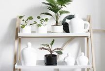 COLOUR | White Decor / White home objects and furniture