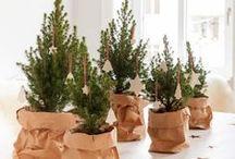 DIY Holiday | Christmas Cheer / Inspiration for a bright and festive Christmas!