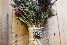 lavendar / by Dianne