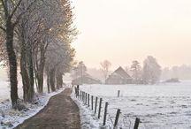 winter / by Dianne