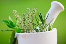 Medicinal Plants / by Sally Berg