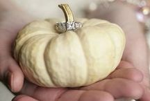 Fall Brides / Fall weddings / by Stephanie Rose