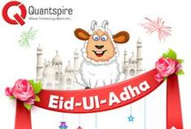 Wishes from Quantspire
