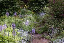 Romantic Pathways - Secret Gardens - Paths Leading to Where? / ~Enchantment ~