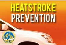 Heatstroke Prevention / Heatstroke is the leading cause of non-crash, vehicle-related deaths for children. On average, every 10 days a child dies from heatstroke in a vehicle. / by NJ Division of Highway Traffic Safety