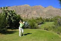 Tucson Golf Estates / Photos of the gorgeous homes and golf courses in Tucson, Arizona. Take a look at the golf communities where Bill Anderson specializes as an exclusive buyers' broker.