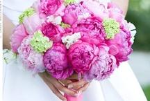 My dream wedding / by Janine Soriano