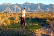 Tucson Golf Estates Blog