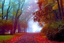 Walk with me in the fall