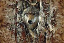 Art ✿⊱ - Animals