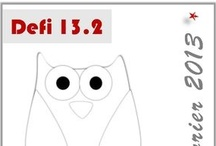 13.2 - Vos Chouettes hiboux Owl