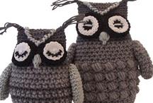 13.2 - Chouettes Hiboux Owl sur le net