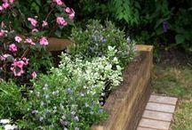 Gardening Brilliance  :)