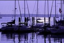 A Passion for Purple / I love the color purple.