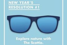 Sunnies New Years Resolution