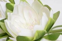 Les fleurs... / Une vaste sélection de fleurs pour décorer votre table mais aussi vos accessoires de décoration : chandelier, boite à dragées, vase...