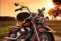 Harley Davidson Bikes / Awesome Harley Davidson Motorcycles