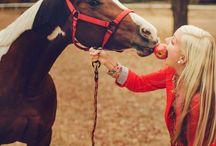 Pet portraits / Pet & animal moments