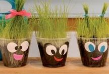 Grass and Jars / Growing grass in a jar and decorate creatively