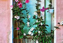 Flores / Pra inspirar o dia a dia