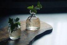 garden / green / by Miss N