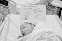 babies! / by Tiffanie Lawson