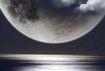 Paisajes / Trata sobre los distintos paisajes: Auroras boreales, olas a punto de romper, árboles acompañados por la luna...