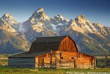 Barns / by Deborah Christen
