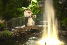 Weddings in Fox Hollow's Gardens / Picturesque gardens at the Fox Hollow lend an ideal setting for your wedding photos
