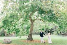 My Engagement Work / http://www.weddingnature.com/department/engagenents/