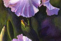 Flower pictures Watercolour / Akvarell maling & inspirasjonsbilder