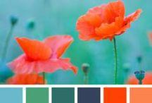 Kleurpalet