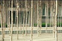 Urbain/Jardins/Terrasses