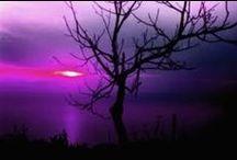Above - Sun / Sunrises & Sunsets open us to the creator's splendor. / by Deborah George