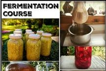 Online fermentation Course / Making your own fermented foods will not only dramatically increase your health, but also save you lots of money!  In my online fermentation course, learn to make Greek Yogurt, Beet Kvass, Sauerkraut, Kombucha and No knead bread.  You learn with ebooks, demonstration movies filmed in my kitchen, and a private Facebook group.