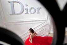 A flower called Christian Dior.