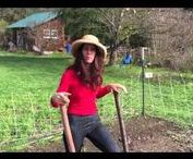 Marblemount Homestead Movies - How to's and inspiration for living a homesteading life / These are short movies about our homesteading life near the wilderness in the Pacific Northwest.  I have how to tutorials here, as well as fun, inspiring little snippets about the good homesteading life.