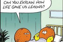 Funny / #funny #humor #haha #meme #lol / by aiwa
