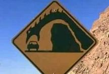 Road Signs Along the Way / Road Signs That Make Us Smile  / by Middletown Honda