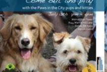 Animal Organizations / My favorite animal organizations that can use support and donations / by Becky Haisma