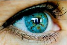 The INCREDIBLE Eye / Here are some fun facts about the INCREDIBLE eye.