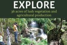 EXPLORE / 36 acres of lush vegetation and agricultural production
