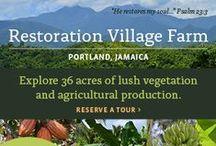 Restoration Village Farm