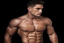 Masculine anatomy / Masculine anatomy of realistic Men