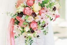 ➳ pink weddings / by Bloom + Company
