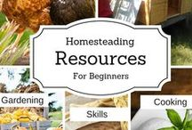 Homesteading ideas