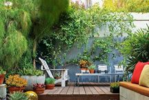 INSPIRATION GARDEN / Ideas for Jan Kok Lodges' #garden...and also just images that I love. #curacao
