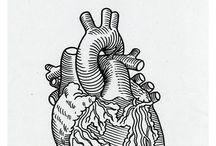 d/a/r/l/i/n/g / #heart